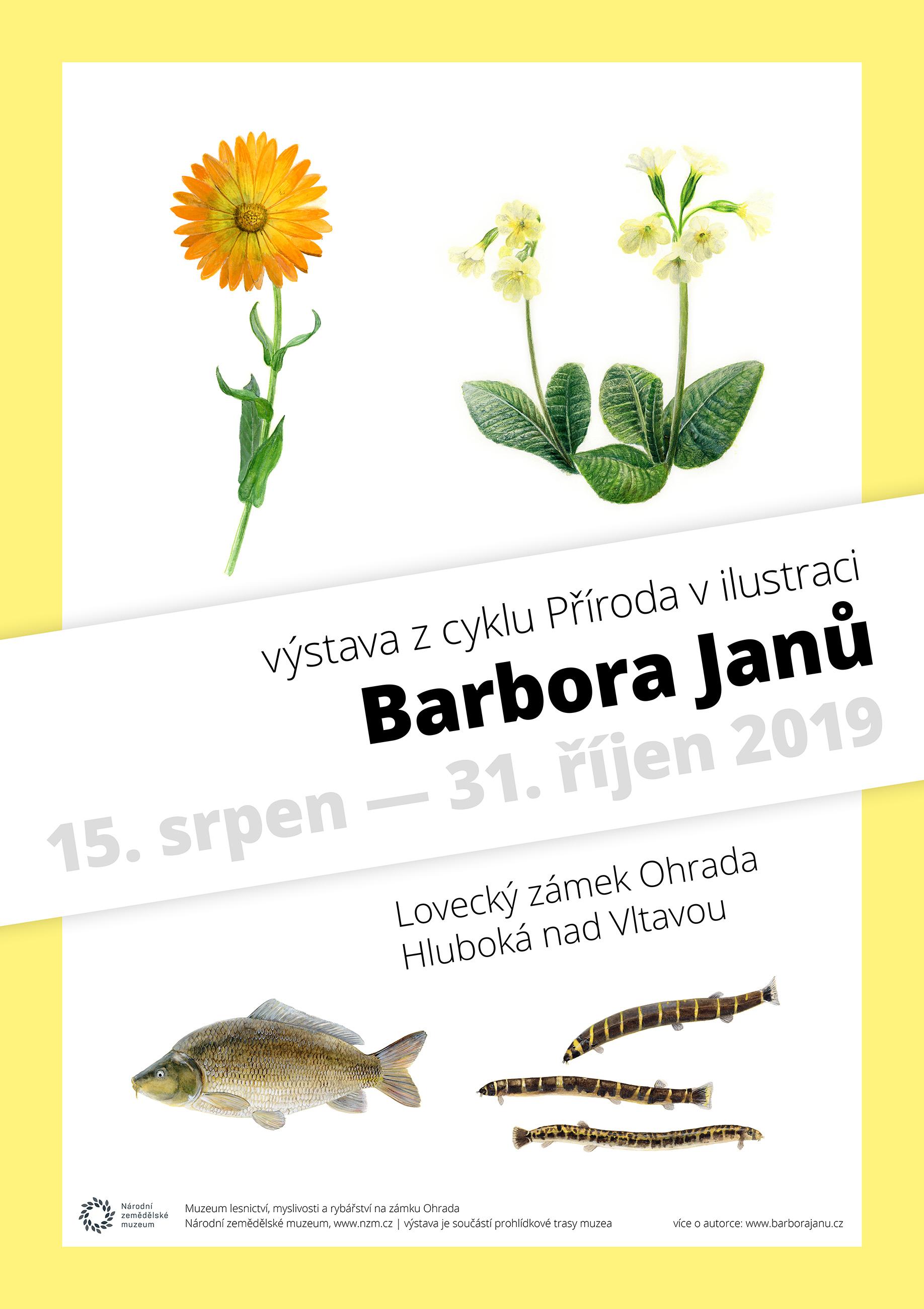 Barbora Janů - plakát na výstavu ilustrací